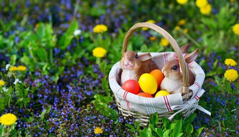 Que esta Páscoa seja de renovação, por dentro e por fora, holisticamente