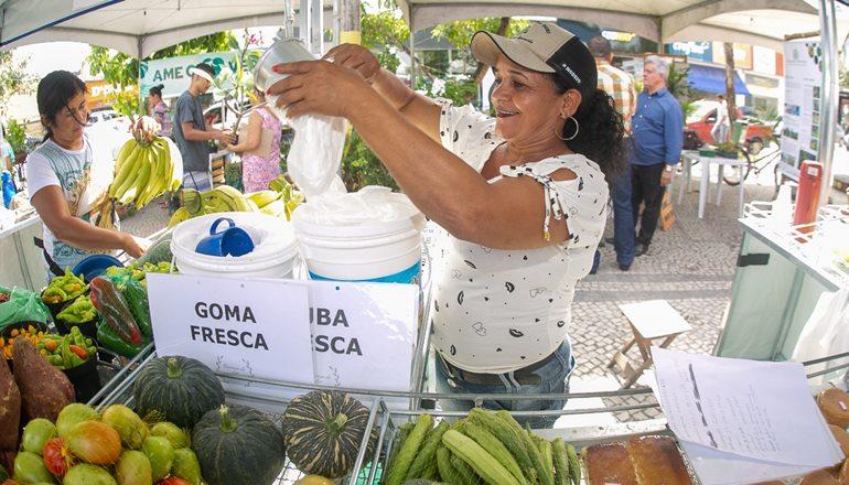 Mais saúde: Sexta-feira tem Feira da Agricultura Familiar