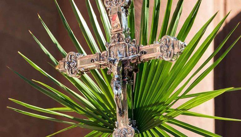 Diocese convida fiéis a acompanharem em casa a celebração de Ramos